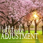 Attitude Adjustment Square