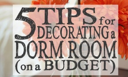 5 Tips for Decorating a Dorm Room (on a Budget)