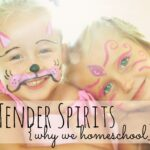 Tender Spirtis {Why We Homeschool}  One mom's explanation of why they made the decision to homeschool.  A great read if you've ever thought about homeschooling!