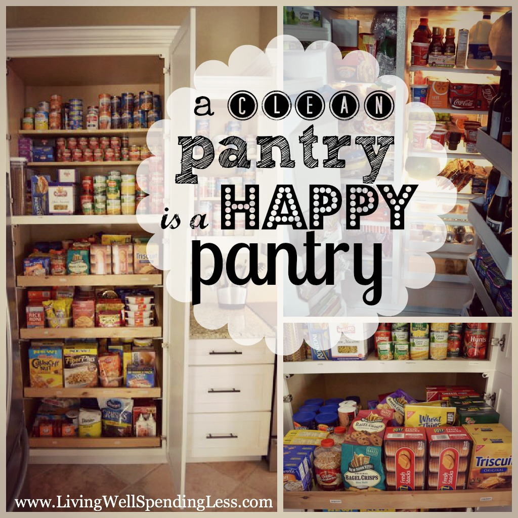 Strategies for Organizing Your Pantry | Best Pantry Organizers | Easy Ideas for Organizing and Cleaning Pantry | Purge Your Pantry