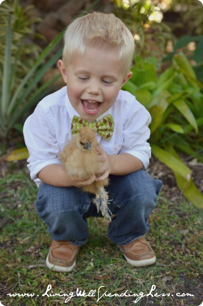 This young boy has fun holding a chicken.