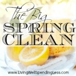 The Big Spring Clean {Spring Cleaning Series}