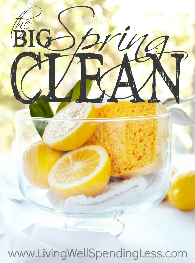 The Big Spring Clean Vertical