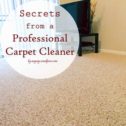 Weekend wandering living well spending less - Tips about carpet cleaning ...