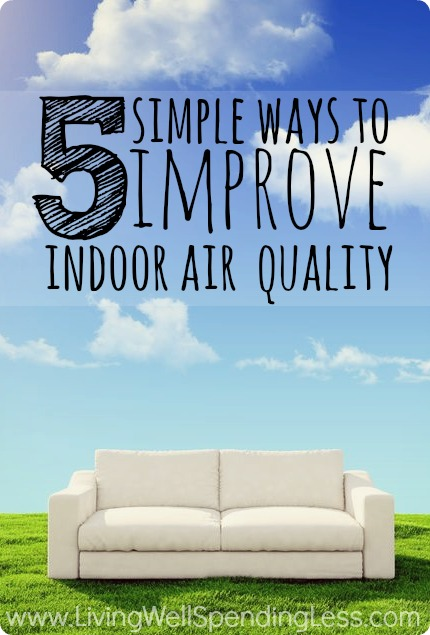 5 Simple Ways To Improve Indoor Air Quality
