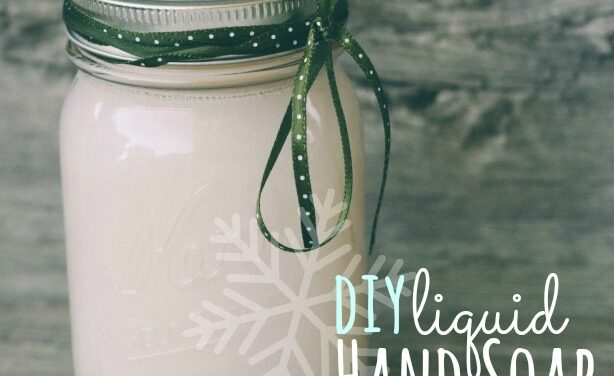 DIY Liquid Hand Soap