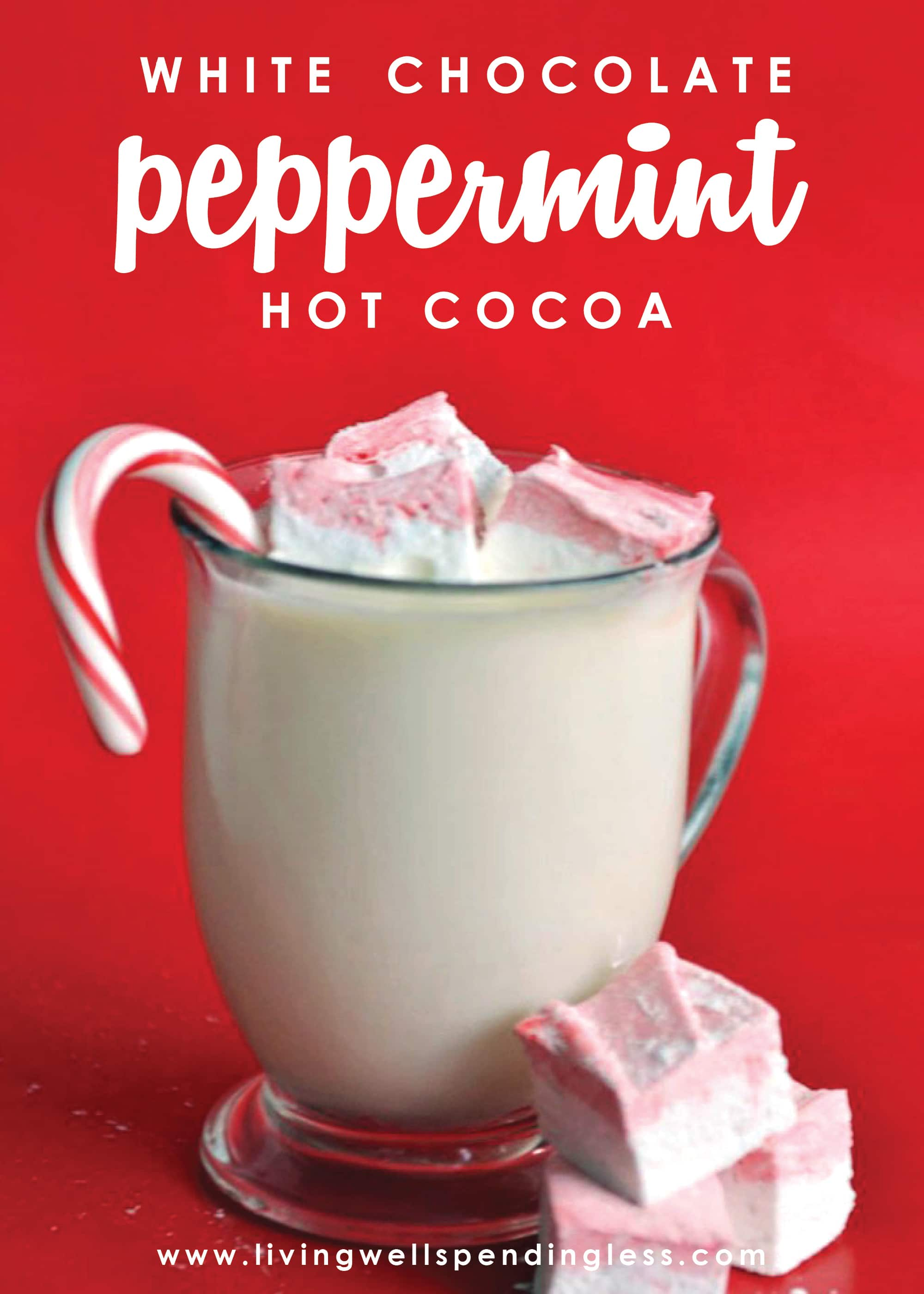 """This Homemade White Chocolate Peppermint Hot Cocoa has been declared """"the best hot chocolate EVER""""!"""