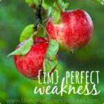 Imperfect Weakness