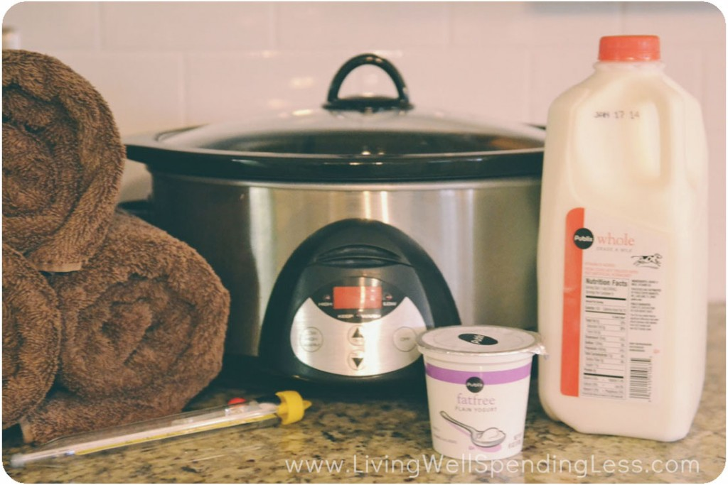 Homemade Yogurt ingredients and supplies.