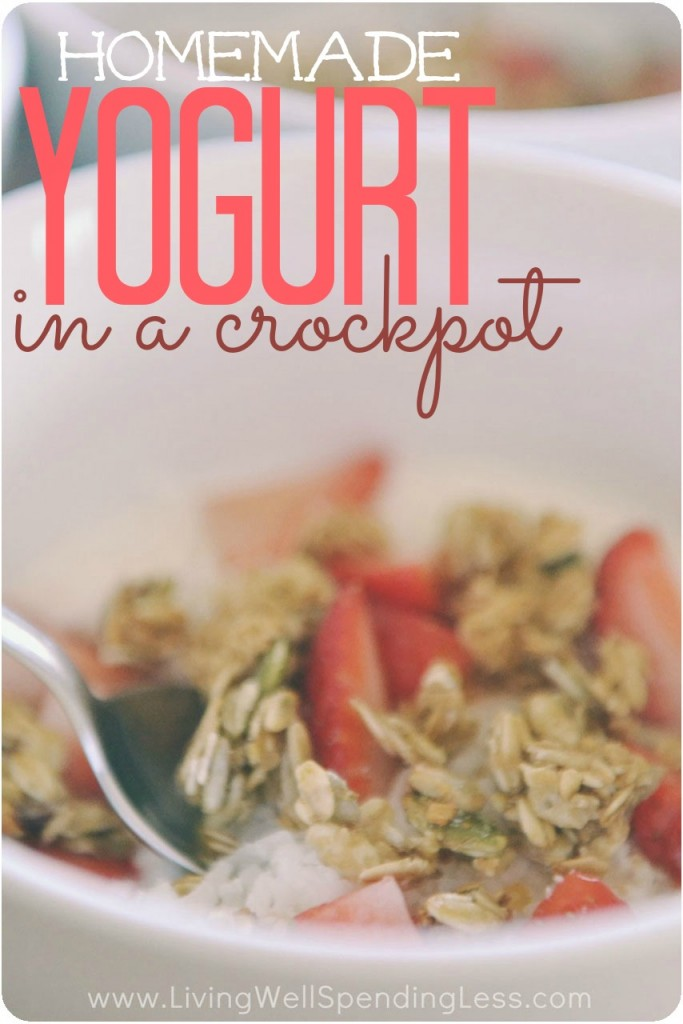 YogurtinaCrockpot16.1