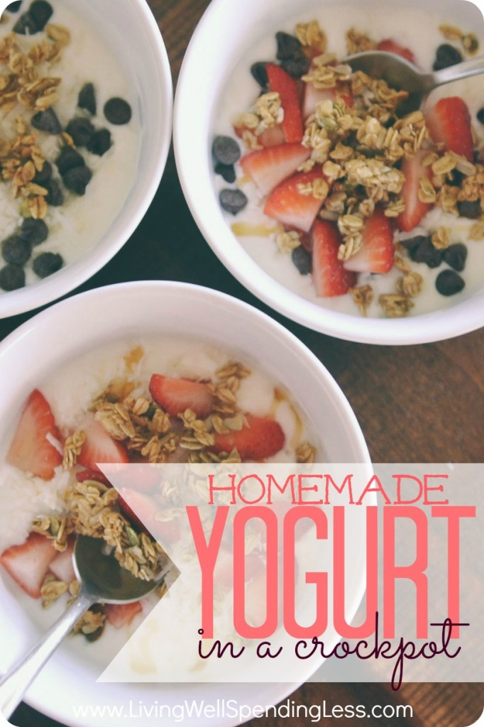 Homemade Yogurt in a Crockpot