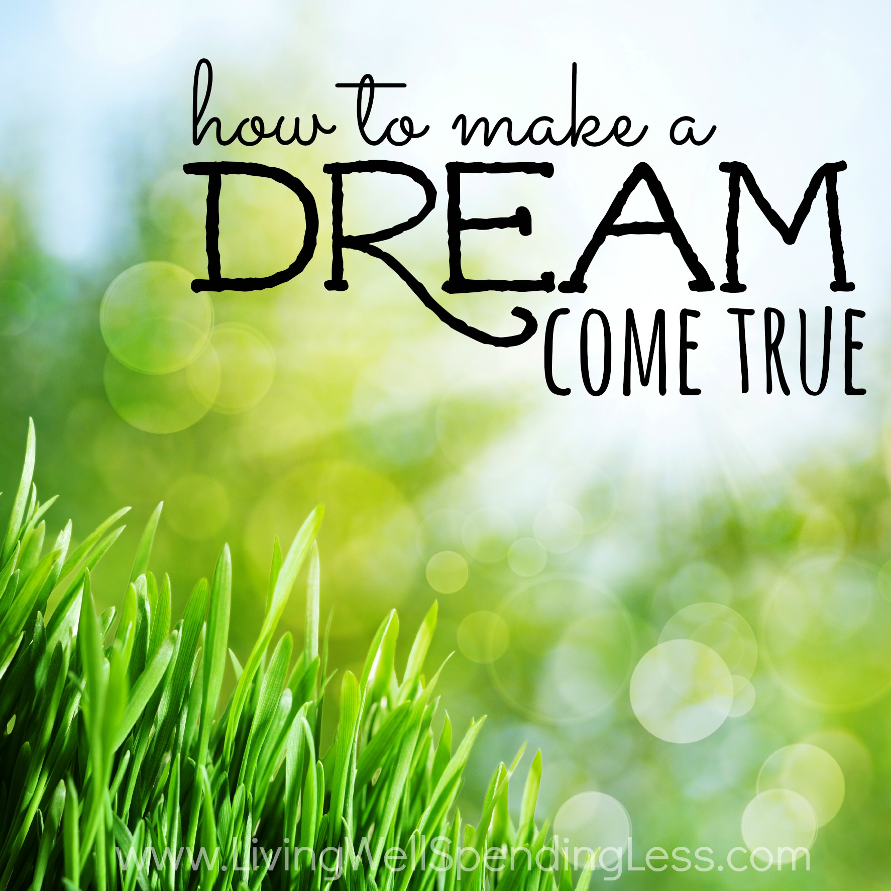 an overview of a dream come true My secret unicorn: dreams come true by linda chapman most of the time,  twilight looks like an ordinary grey pony but when lauren says.