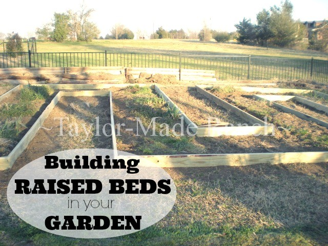 Building-Raised-Beds-Label-TaylorMadeRanch-2