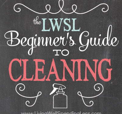 Beginner's Guide to Cleaning Part 1: Getting Started