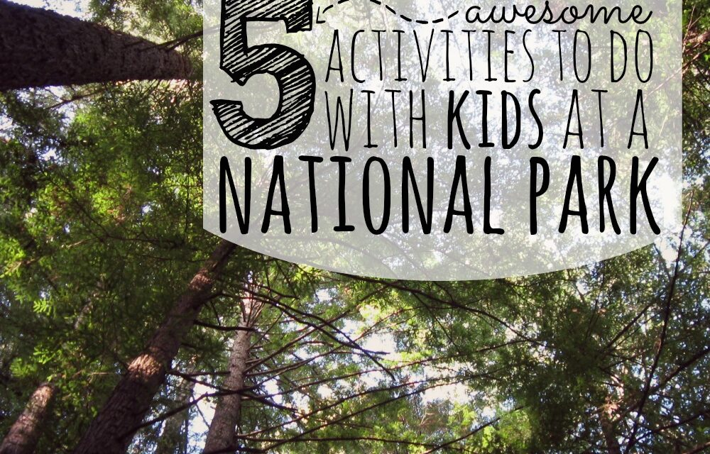 5 Awesome Activities to Do With Kids at a National Park