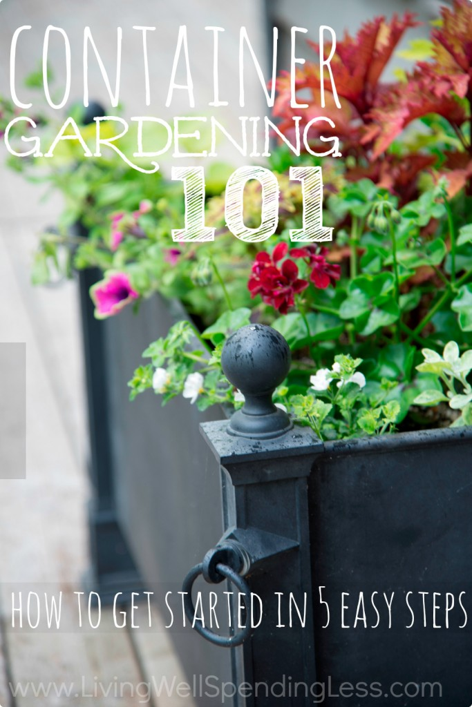 Container gardening 101 container gardening container for Gardening 101 vegetables