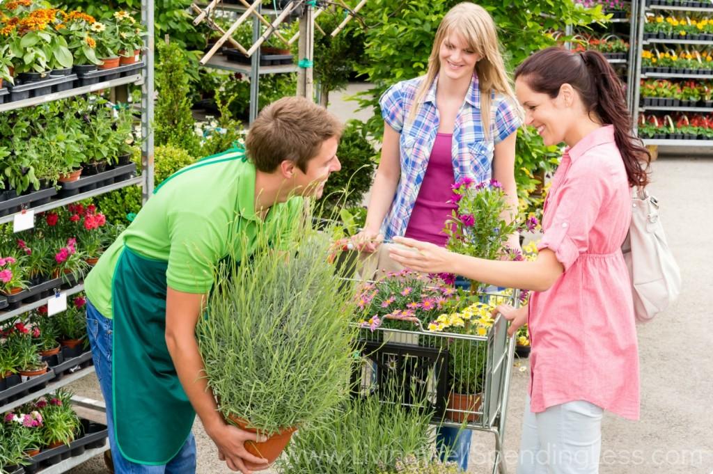 The next step in container gardening for beginners is picking what plants to start with. Perennials are good options for beginner gardeners.