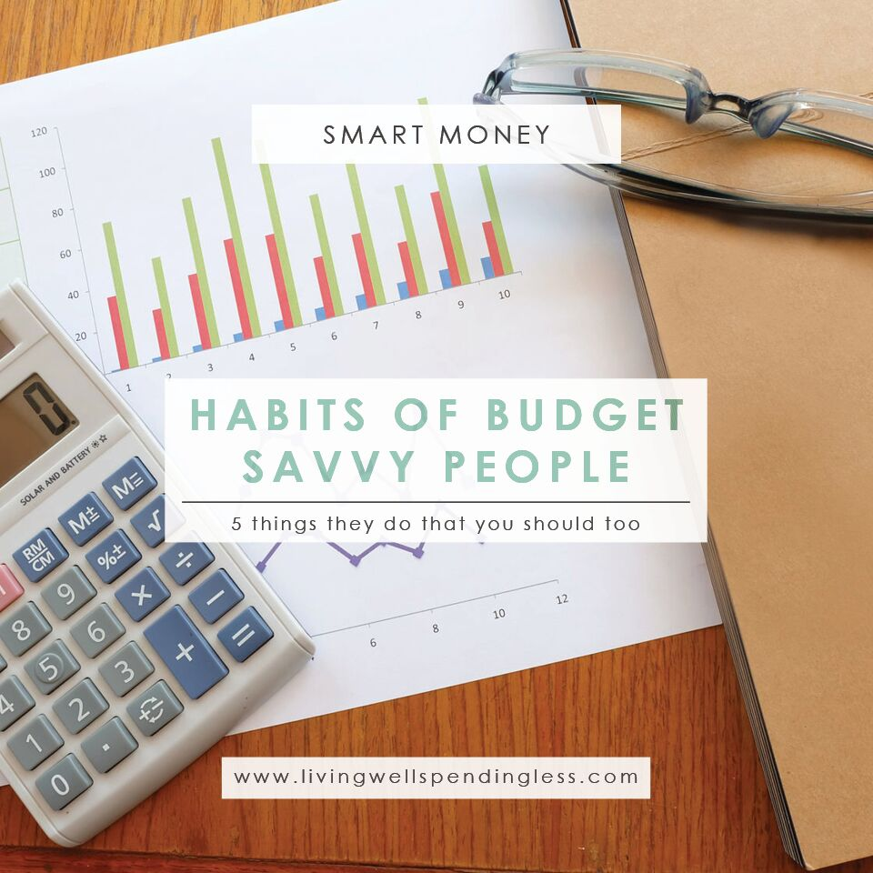 Budget-Savvy Habits | Good Financial Habits | Budgeting Ideas | Finance Goals | Saving Tips | Hacks on Saving | How to Save | | Money Advice