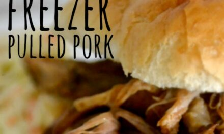 Easy Freezer Pulled Pork