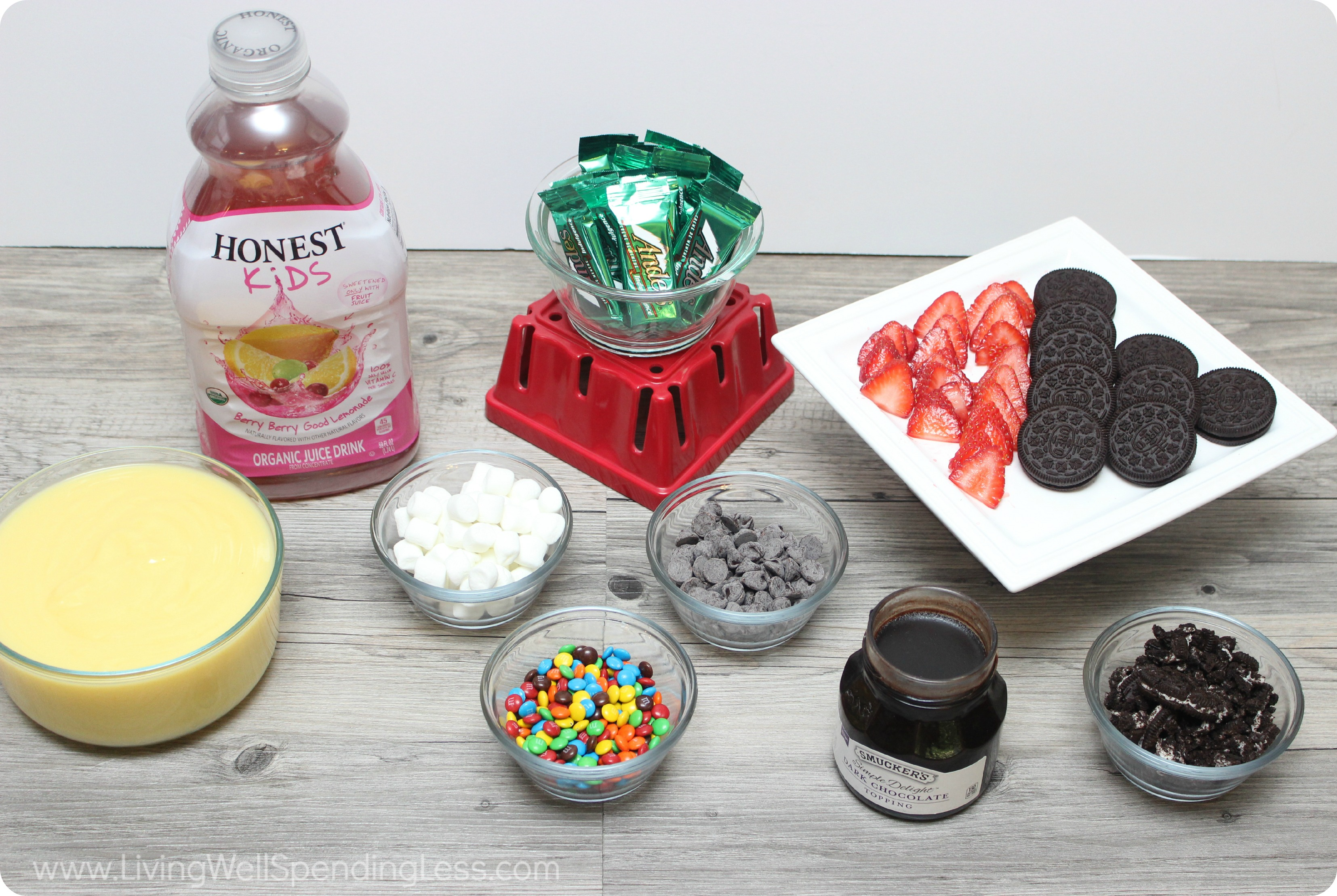 Fun and easy diy popsicles living well spending less for Fun and easy diys
