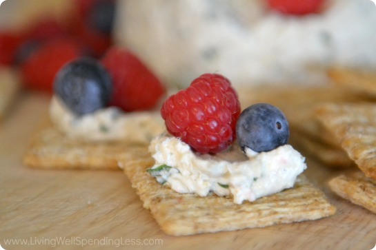 Summer Cheese Balls with Berries 14 rounded corners.jpg
