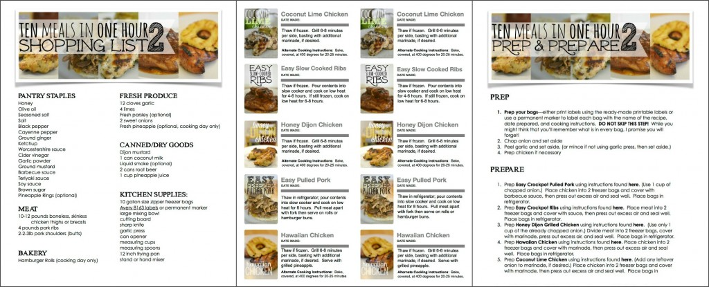 10 Freezer Meals in an Hour | Easy Freezer Cooking Meal Plan | Healthy Crockpot Freezer Meals | 1 Hour 10 Meals | Easy Cooking | Time Saving Cooking Guide | Chicken Recipes | Slow Cooked Ribs | Pulled Pork | Meal Plan | Easy to cook | freezer Meals | Free Printables