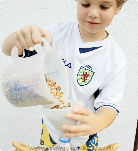 DIY Bird Feeder - Summer Fun With Kids 11_1