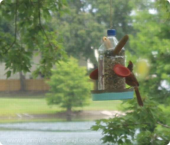 DIY Bird Feeder - Summer Fun With Kids 12_1