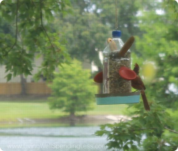 DIY Bird Feeder - Summer Fun With Kids 12_1