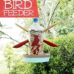This easy DIY bird feeder is a fun project to create with the kids! You can then spend the next several months together watching all the bird visitors!