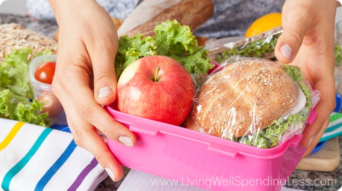 Pack your lunches and bring them with you, rather than buying food at the park.