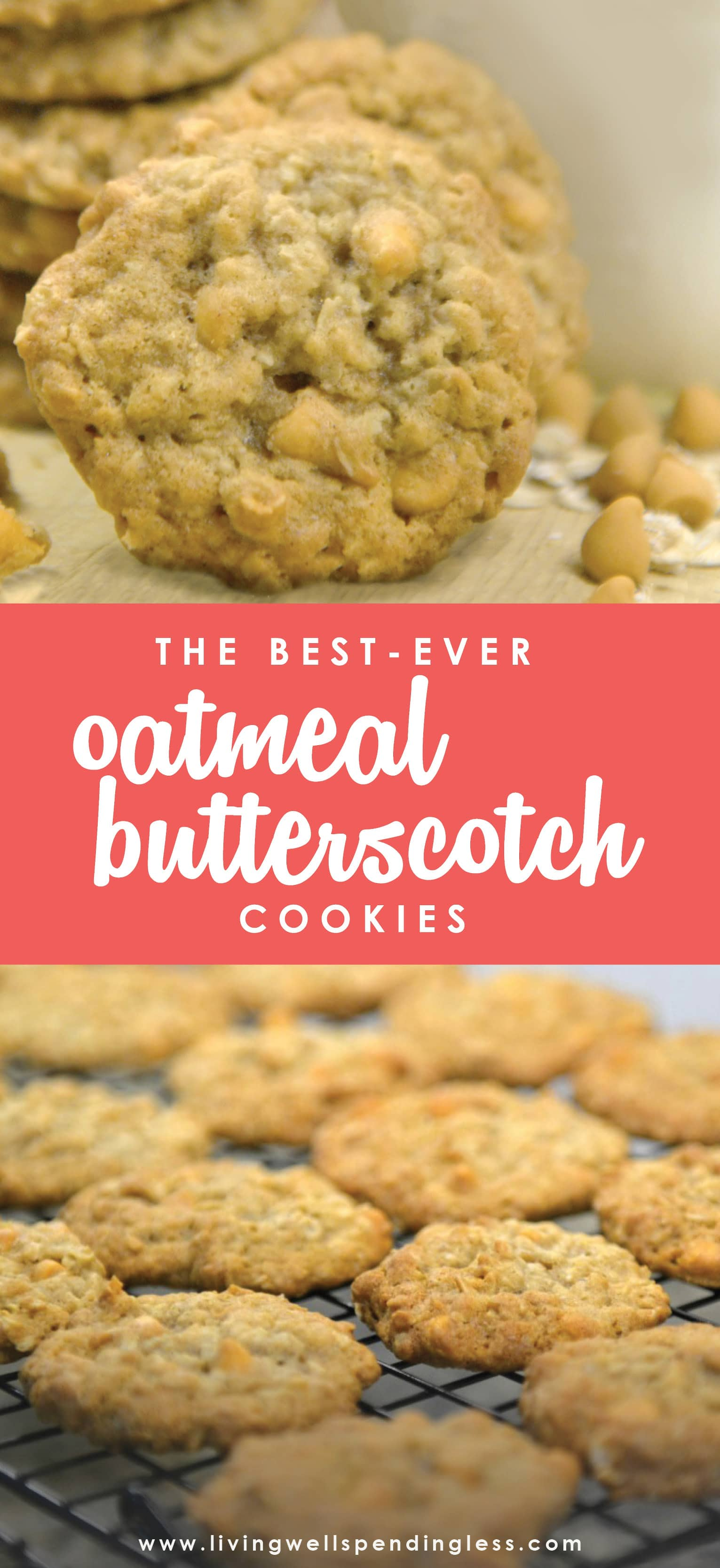 Love homemade cookies but don't always have time for baking? These oh-so-yummy oatmeal butterscotch cookies freeze beautifully and taste just as good straight out of the freezer as straight out of the oven!