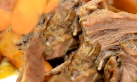 Easy Freezer Balsamic Roast Beef