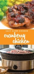 This deceptively easy dish makes everyday feel like a holiday! Moist, juicy, and full of flavor, this simple cranberry chicken whips up in minutes with just a few basic ingredients, and is freezer and crockpot friendly too!