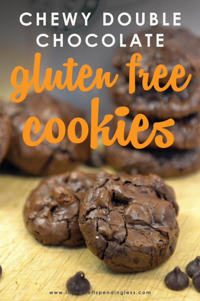 What's better than a dense, rich, chewy flourless chocolate cookie? One that is gluten free, low in calories and ridiculously easy-to-make!