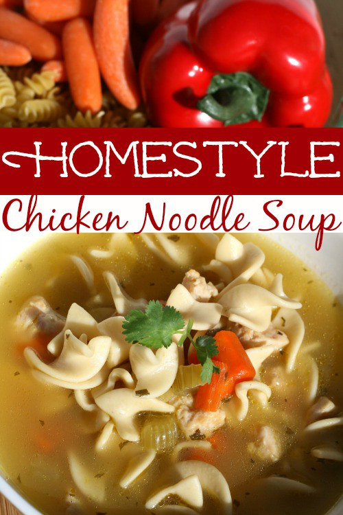 homestyle-chicken-noodle-soup-recipe