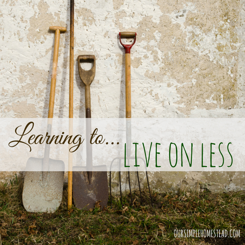 learning-to-live-on-less