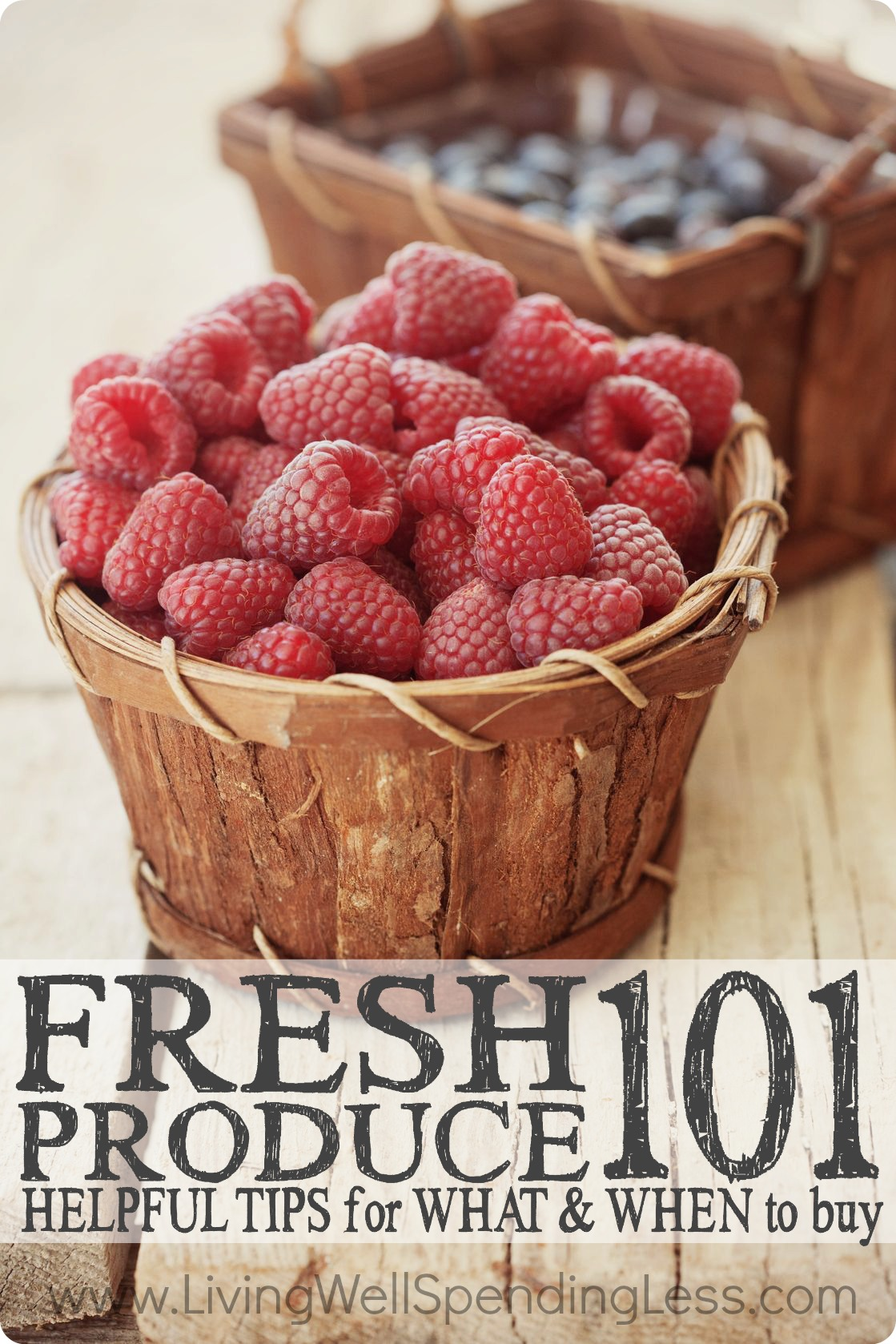 Fresh Produce 101   Coupons 101   Kitchen Saving Tips   Save on Food   Organic Food