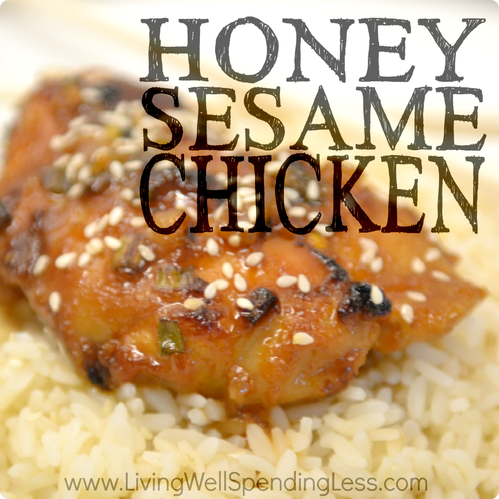 Honey Sesame Chicken | 10 Meals in an Hour | Freezer Cooking | Freezer Meals | Main Course Meat | Chicken Recipes