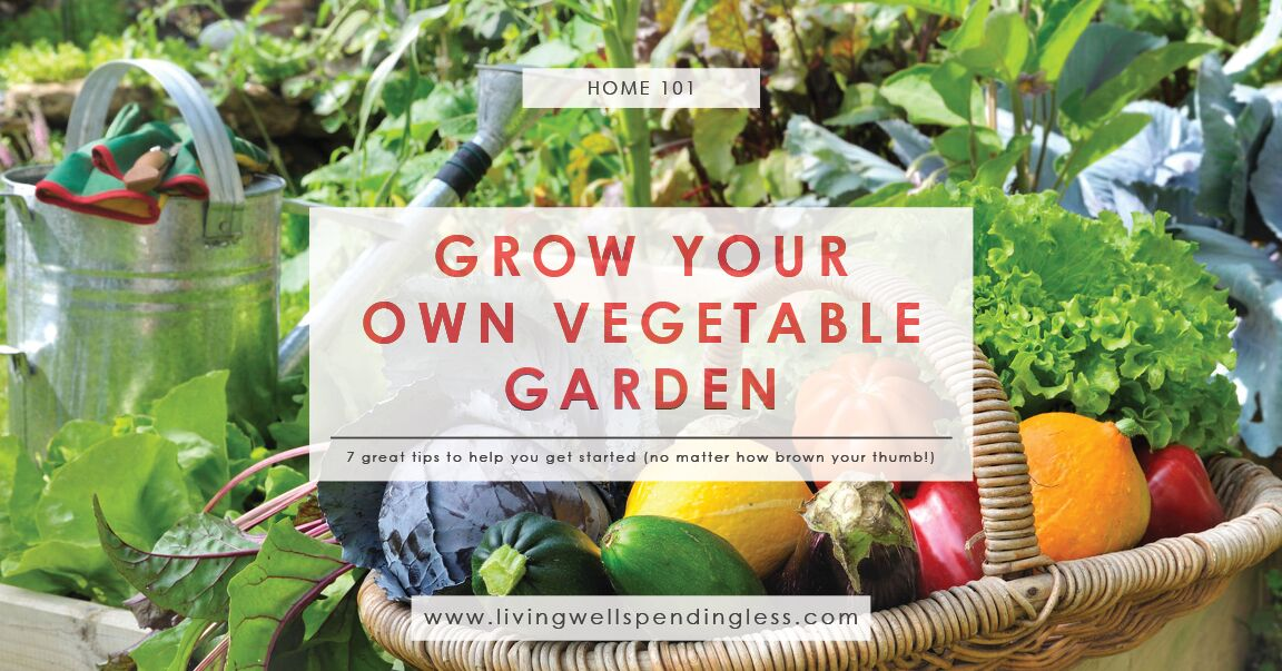 How to grow a vegetable garden gardening tips for brown for Grow your own vegetables