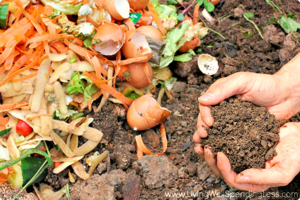Using the right dirt and composting for your vegetable garden is important.