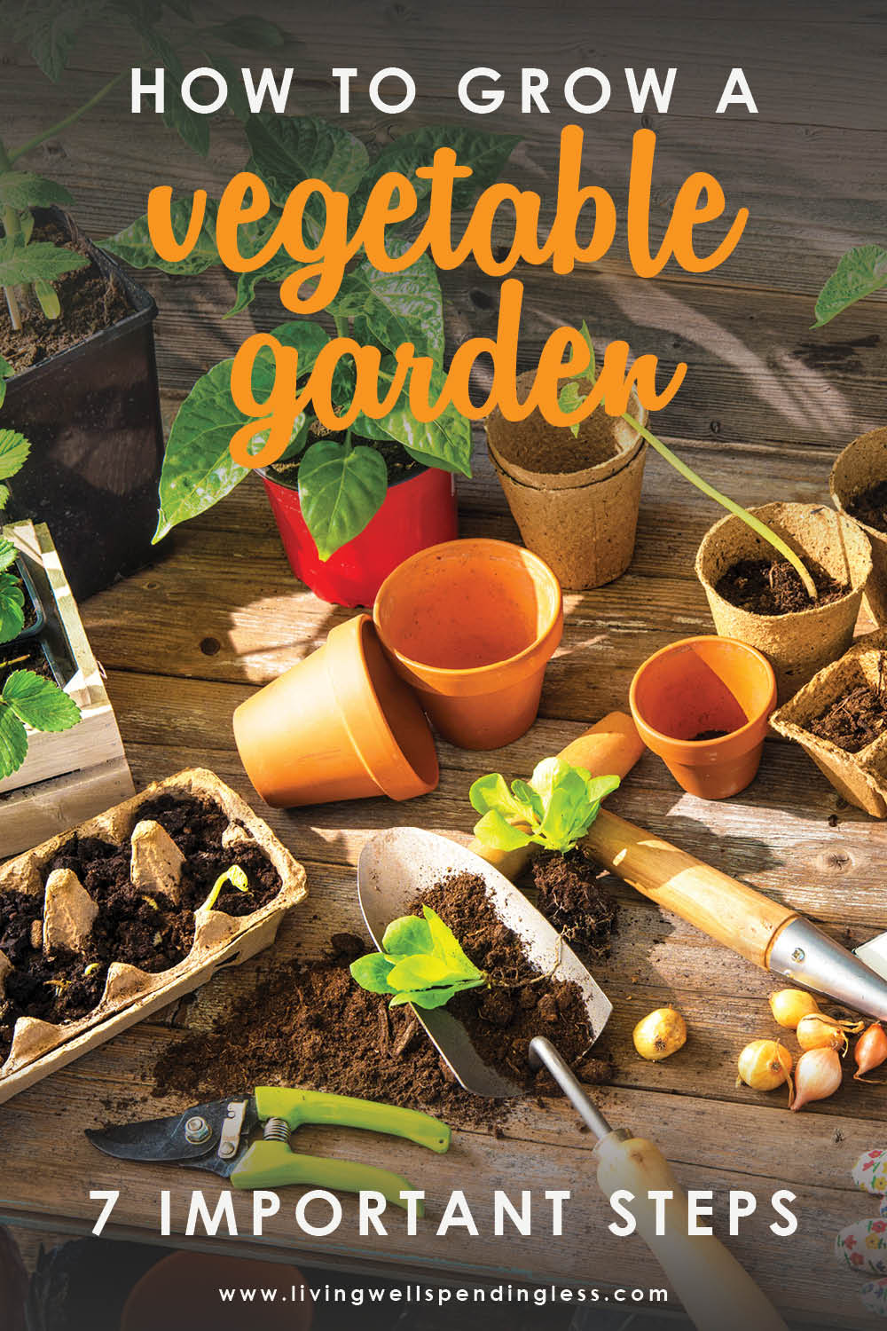 Want to grow your own food? These 7 important tips on how to grow a vegetable garden will help you make it happen no matter what your experience level!