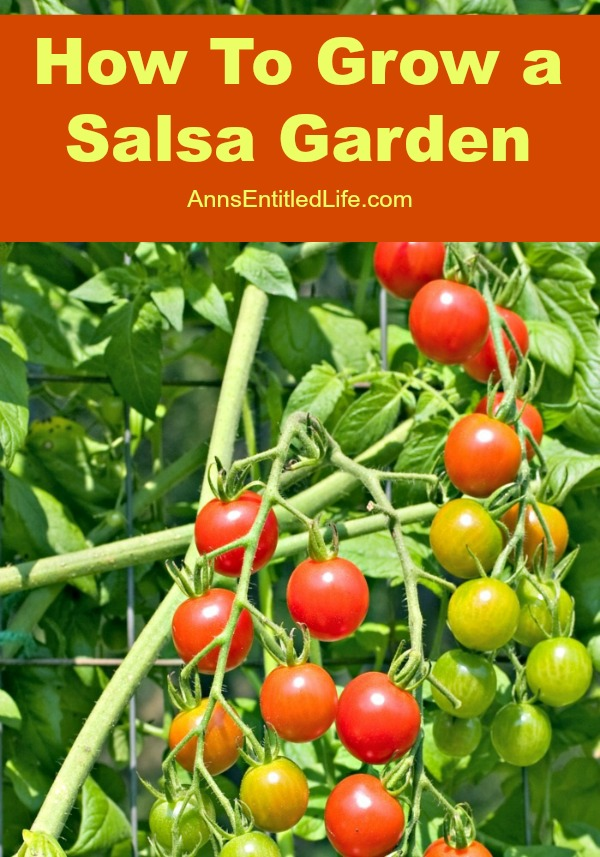 Use these tips to learn how to grow a salsa garden.