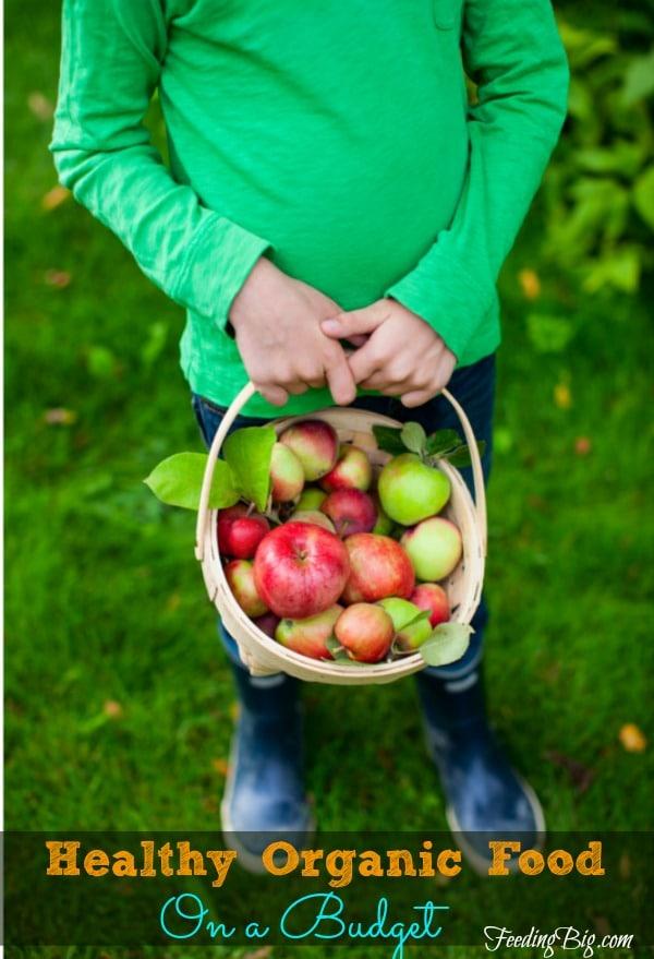Healthy-Organic-Food-On-a-Budget-2