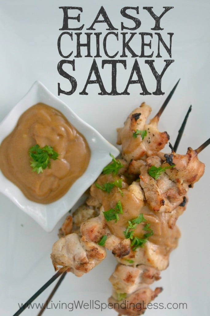 Easy Chicken Satay | 10 Meals in an Hour | Freezer Cooking | Main Course Meat | Chicken Recipes