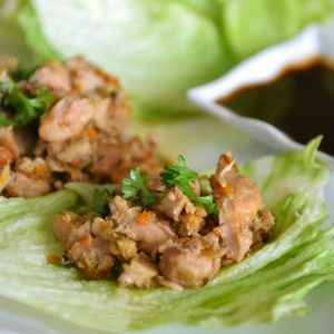 Easy Crockpot Lettuce Wraps | 10 Meals in an Hour | Freezer Cooking | Main Course Meat