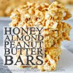 Honey Almond Peanut Butter Bars Square 3