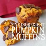 5 Ingredient Pumpkin Muffins Square