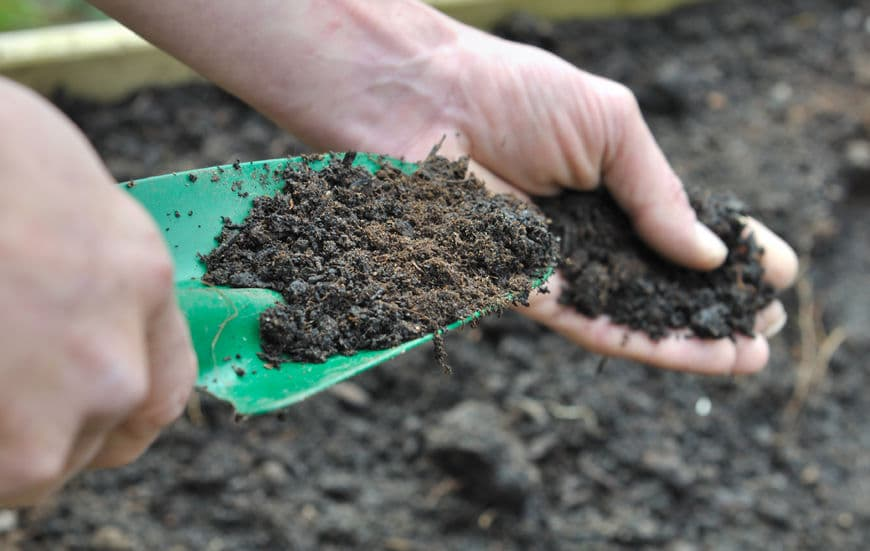 When you're ready to plant in your garden, spread your compost pile into the dirt.
