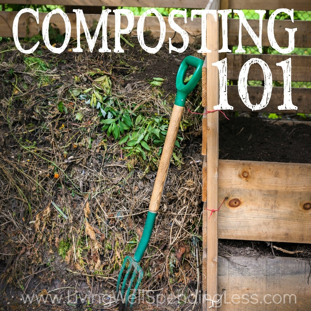 Composting 101 What Is Compost: Composting Tips